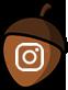 Ikonica za Instagram